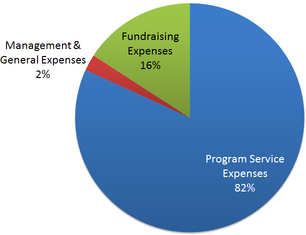 NISRA Foundation Allocation of Expenses pie chart
