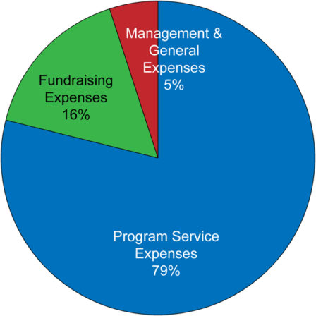 Foundation Allocation of Expenses pie chart